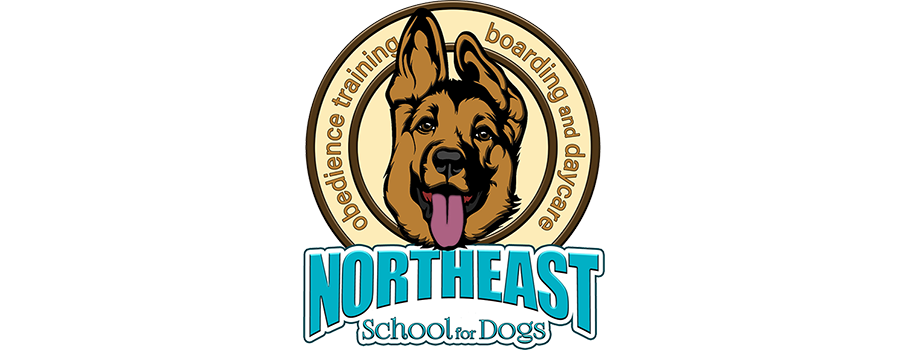 Northeast School for Dogs